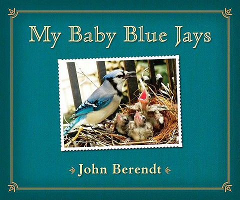 My Baby Blue Jays Cover