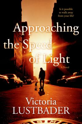 Cover for Approaching the Speed of Light