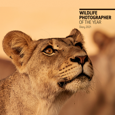 Wildlife Photographer of the Year Pocket Diary 2021 (Wildlife Photographer of the Year Diaries) Cover Image