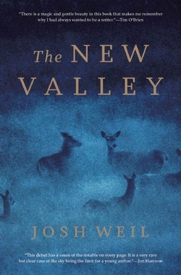 Cover for The New Valley
