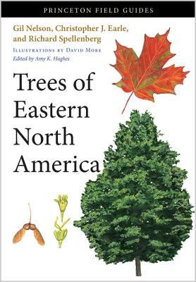 Trees of Eastern North America (Princeton Field Guides #93) Cover Image