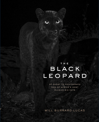 The Black Leopard: My Quest to Photograph One of Africa's Most Elusive Big Cats Cover Image