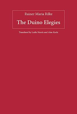 The Duino Elegies (Studies in German Literature Linguistics and Culture) Cover Image