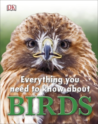 Everything You Need to Know about Birds Cover Image