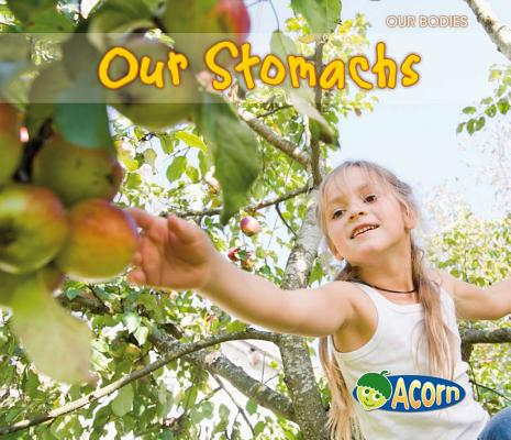 Our Stomachs (Our Bodies (Heinemann Hardcover)) Cover Image