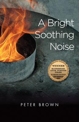 Cover for A Bright Soothing Noise (Katherine Anne Porter Prize in Short Fiction #9)