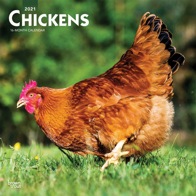 Chickens 2021 Square Cover Image