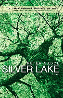 Silver Lake Cover Image
