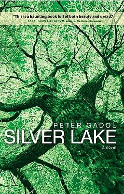 Silver Lake Cover Image