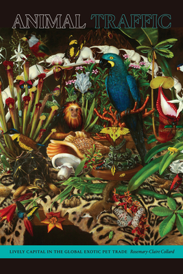 Animal Traffic: Lively Capital in the Global Exotic Pet Trade Cover Image