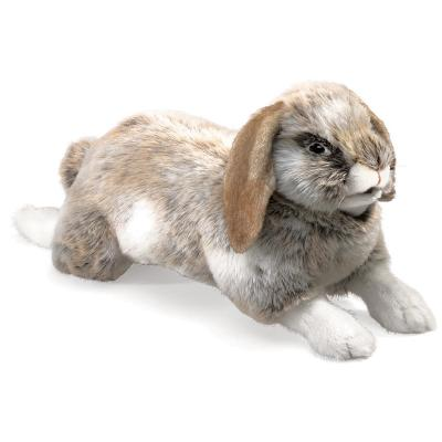 Puppet Holland Lop Rabbit Cover Image