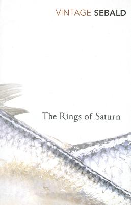 The Rings of Saturn Cover Image