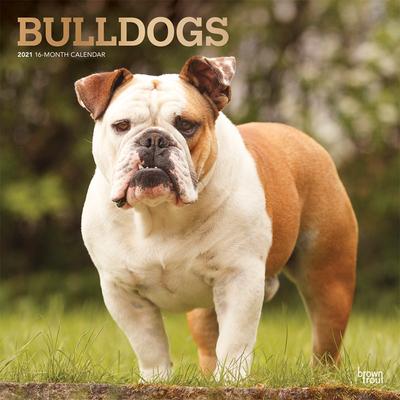 Bulldogs 2021 Square Foil Cover Image