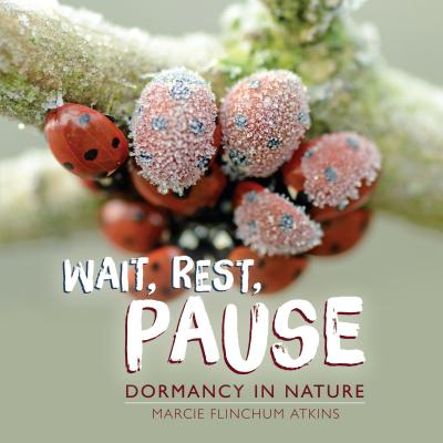 Wait, Rest, Pause Cover Image