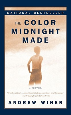 The Color Midnight Made Cover Image