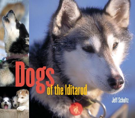 Dogs of the Iditarod Cover