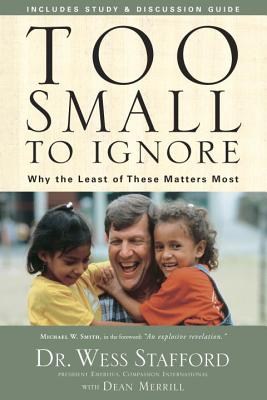 Too Small to Ignore Cover