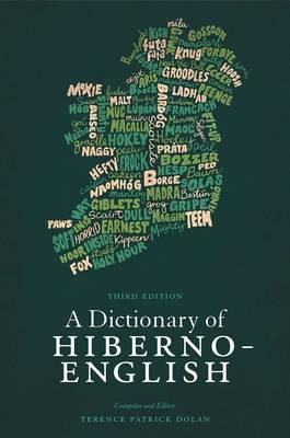 A Dictionary of Hiberno-English Cover Image