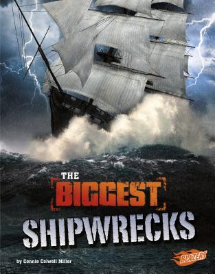 The Biggest Shipwrecks (History's Biggest Disasters) Cover Image