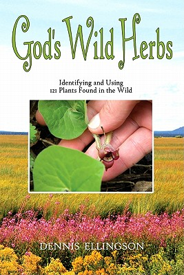 Cover for God's Wild Herbs