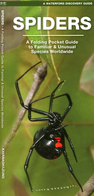 Spiders: A Folding Pocket Guide to Familiar Species Worldwide (Waterford Discovery Guide) Cover Image