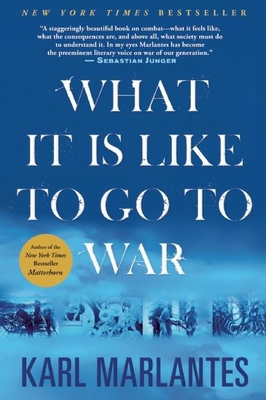 What It Is Like to Go to War Cover Image