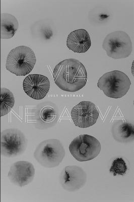 Via Negativa Cover Image