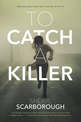 To Catch a Killer: A Novel (Erin Blake #1) Cover Image