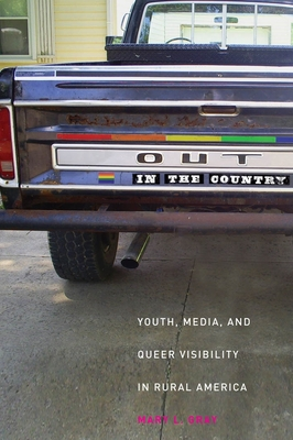 Out in the Country: Youth, Media, and Queer Visibility in Rural America (Intersections #2) Cover Image