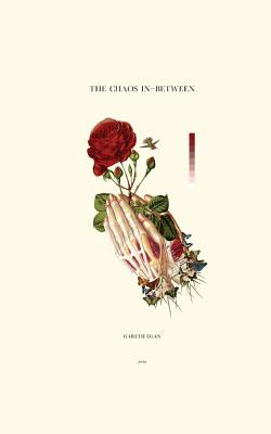 The Chaos In-Between Cover Image