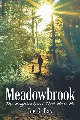 Meadowbrook: The Neighborhood That Made Me Cover Image