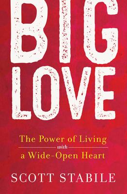 Big Love Cover