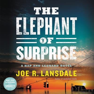 The Elephant of Surprise Cover Image