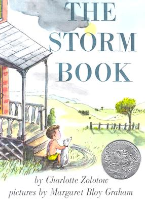 The Storm Book Cover Image