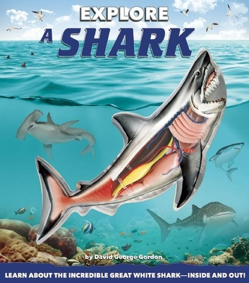 Explore a Shark Cover Image