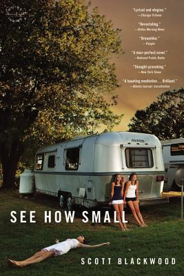 See How Small: A Novel Cover Image
