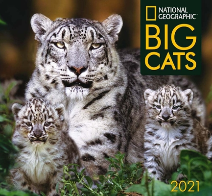 Cal 2021- National Geographic Big Cats Wall Cover Image