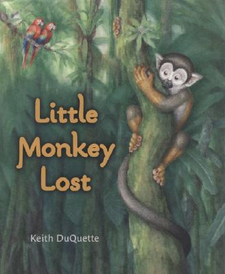 Little Monkey Lost Cover