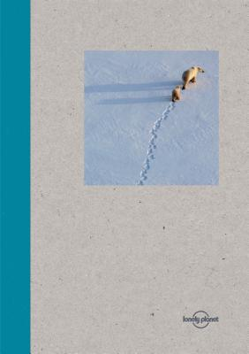 Lonely Planet Small Notebook - Polar Bear Cover Image