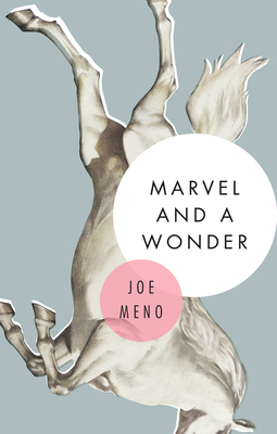 Marvel and a Wonder Cover