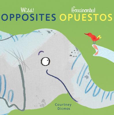 Opposites/Opuestos Cover Image