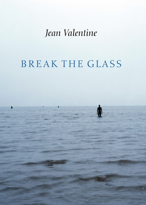 Break the Glass Cover Image