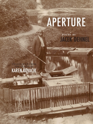 Aperture (New Polish Writing) cover image