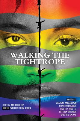 Cover for Walking a Tightrope