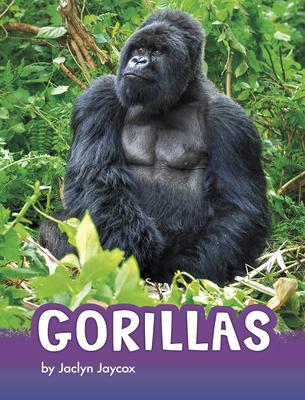 Gorillas (Animals) Cover Image