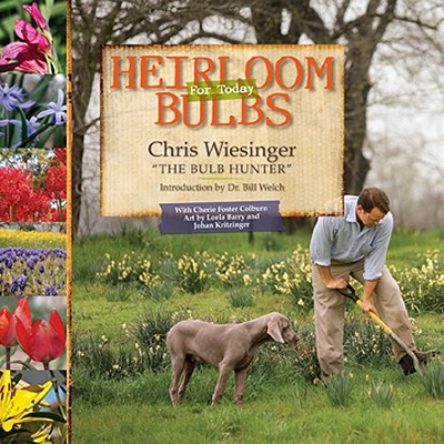 Heirloom Bulbs Cover