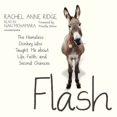 Flash: The Homeless Donkey Who Taught Me about Life, Faith, and Second Chances Cover Image