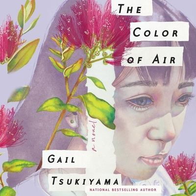 Cover for The Color of Air