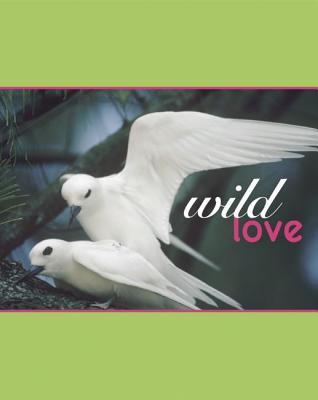 Wild Love Cover Image