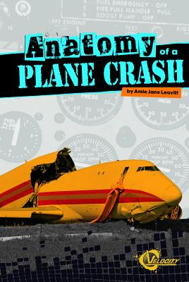 Anatomy of a Plane Crash (Disasters) Cover Image